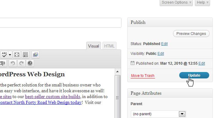 ct wordpress website